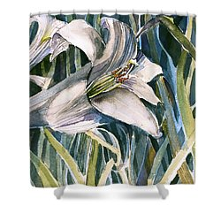 Shower Curtain featuring the painting An Easter Lily by Mindy Newman