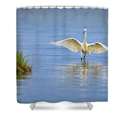 An Egret Spreads Its Wings Shower Curtain by Rick Berk