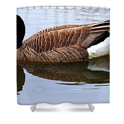 An Elegant Pose Shower Curtain by Frozen in Time Fine Art Photography