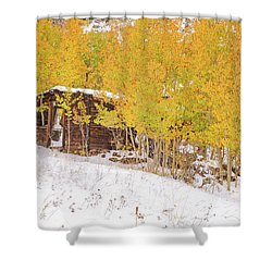 An Example Of Etiolated Nostalgia  Shower Curtain