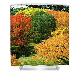 An Explosion Of Color Shower Curtain