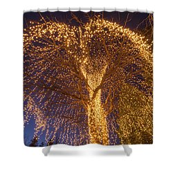 An Extrinsic Element  Shower Curtain