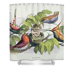 An Intruder Shower Curtain