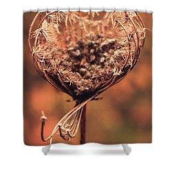 Shower Curtain featuring the photograph An Invite by Viviana  Nadowski