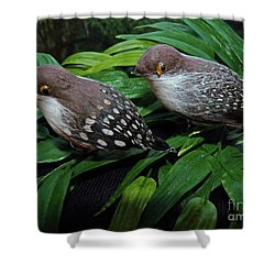 An Old Couple These Two Birds Shower Curtain
