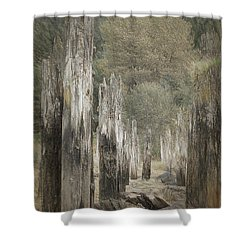 An Other Time Shower Curtain