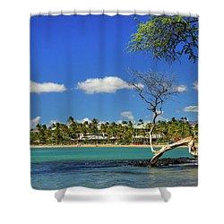 Anaehoomalu Bay Shower Curtain by James Eddy