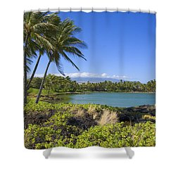 Anaehoomalu Bay Shower Curtain by Ron Dahlquist - Printscapes