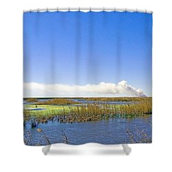 Anahuac Marshes Shower Curtain