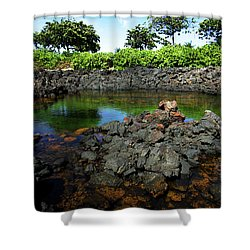 Shower Curtain featuring the photograph Anchialine Pond by Anthony Jones