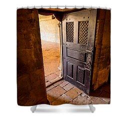 Ancient Door Shower Curtain