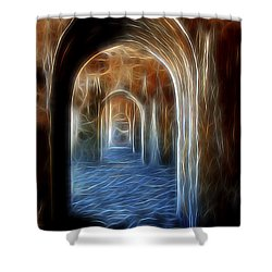 Ancient Doorway 5 Shower Curtain