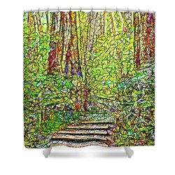 Shower Curtain featuring the digital art Ancient Forest Path - Tamalpais California by Joel Bruce Wallach