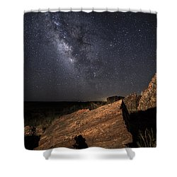 Ancient History Shower Curtain by Melany Sarafis
