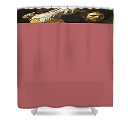 Ancient Human Instinct Shower Curtain