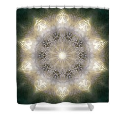 Ancient Light X Shower Curtain by Lisa Lipsett