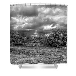 Ancient Orchard Shower Curtain