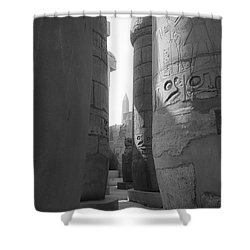 Shower Curtain featuring the photograph Ancient Silence by Silvia Bruno