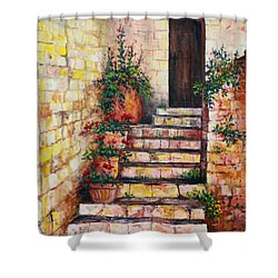 Ancient Stairway Shower Curtain