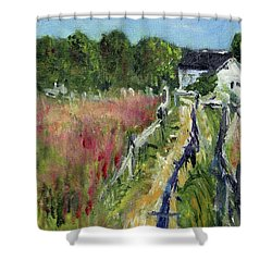 Shower Curtain featuring the painting Ancient Way by Michael Helfen