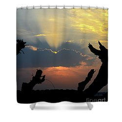 And God Said, Let There Be Light Shower Curtain by Arik Baltinester