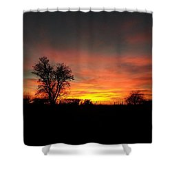 ...and The Day Ended As Beautifully As Shower Curtain
