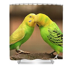 And Then He Kissed Me Shower Curtain by Kim Henderson