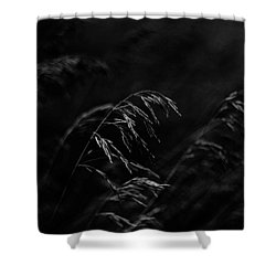 And Yet More Darkness Shower Curtain