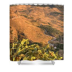 Andalucian Golden Valley Shower Curtain by Ian Middleton
