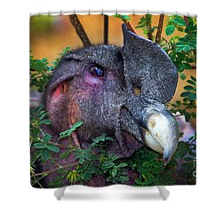 Andean Condor At Amaru II Shower Curtain