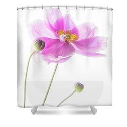 Anemone Babies  Shower Curtain