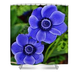 Anemone Nemorosa Shower Curtain