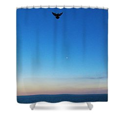 Angel Bird Shower Curtain