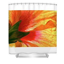 Shower Curtain featuring the photograph Angel Brushstrokes  by Marie Hicks