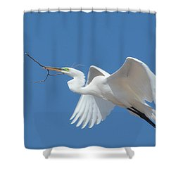 Shower Curtain featuring the photograph Angel In Flight by Fraida Gutovich