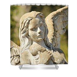 Angel In Mississippi Shower Curtain by Lynn Jordan