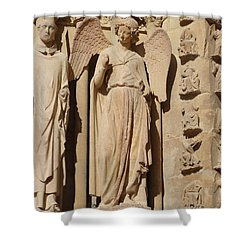 Angel In Reims Shower Curtain