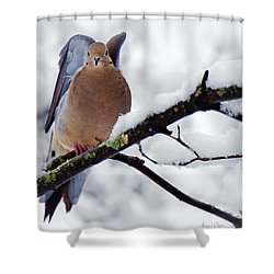 Shower Curtain featuring the photograph Angel Mourning Dove by Angel Cher