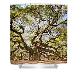 Angel Oak In Spring Shower Curtain