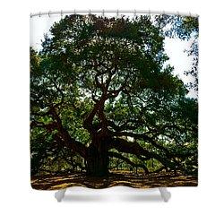 Angel Oak Tree 2004 Shower Curtain by Louis Dallara