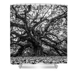 Angel Oak Tree Black And White  Shower Curtain