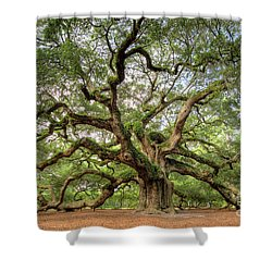 Angel Oak Tree Of Life Shower Curtain