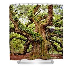 Angel Oak Tree Shower Curtain