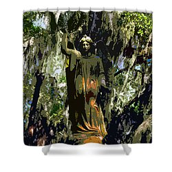 Angel Of Savannah Shower Curtain by David Lee Thompson