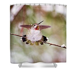 Angel Wings Shower Curtain by Peggy Collins