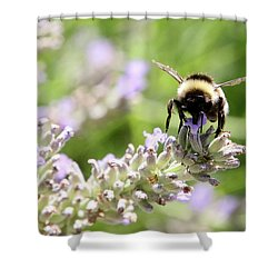 Shower Curtain featuring the photograph Angel Wings by Rasma Bertz