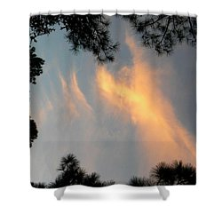 Angels Over The Front Yard Shower Curtain