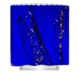 Angels Wings Blue Shower Curtain