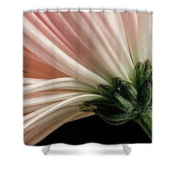 Angled Mum Shower Curtain
