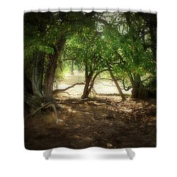 Angustown 2 Shower Curtain